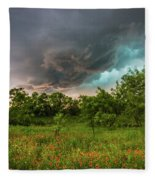 Back To Life - Spring Returns To Western Texas Fleece Blanket