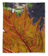 Backlit Leaf 2 Fleece Blanket