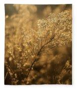 Backlit Wildflower Seeds In Autumn Fleece Blanket