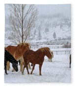 Backs To The Wind Fleece Blanket