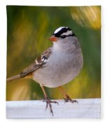 Backyard Bird - White-crowned Sparrow Fleece Blanket
