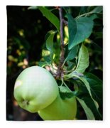 Backyard Garden Series - 2 Apples Fleece Blanket