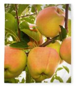 Backyard Garden Series - Apples In Apple Tree Fleece Blanket