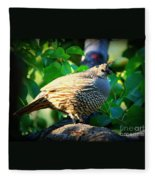 Backyard Garden Series - Quail In A Pear Tree Fleece Blanket