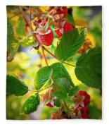 Backyard Garden Series - Sunlight On Raspberries Fleece Blanket