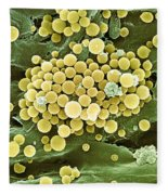 Bacteria On Hops Leaf, Sem Fleece Blanket