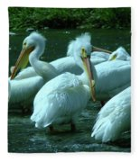 Bad Hair Day At The Pelican Social Gathering  Fleece Blanket