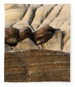 Badlands Drumheller Alberta Canada 4 Fleece Blanket