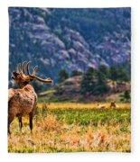 Badlands Elk  Fleece Blanket