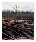 Badlands In Autumn Fleece Blanket