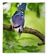 Balanced Blue Jay Fleece Blanket