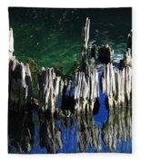 Bald Cypress Stump Fleece Blanket