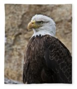 Bald Eagle - Portrait 2 Fleece Blanket