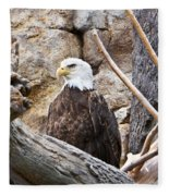 Bald Eagle - Portrait Fleece Blanket