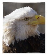 Bald Eagle 3 Fleece Blanket