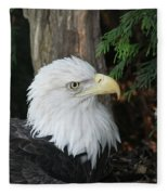 Bald Eagle #8 Fleece Blanket