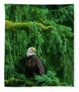 Bald Eagle In Temperate Rainforest Alaska Endangered Species Fleece Blanket