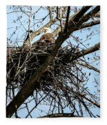 Bald Eagle In The Nest Fleece Blanket