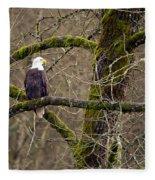 Bald Eagle On Mossy Branch Fleece Blanket