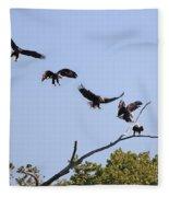 Bald Eagle Sequence  1277 Fleece Blanket