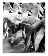 Ballet Dancers Fleece Blanket