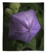 Balloon Flower Fleece Blanket