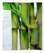 Bamboo And Sky Fleece Blanket