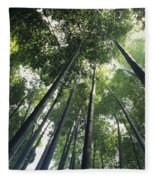 Bamboo Forest Fleece Blanket