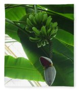 Banana Plant Kew London England Fleece Blanket