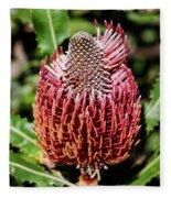 Banksia In Red Fleece Blanket