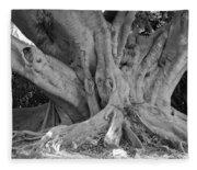 Banyan Tree Fleece Blanket