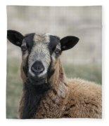 Barbados Blackbelly Sheep Portrait Fleece Blanket