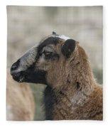 Barbados Blackbelly Sheep Profile Fleece Blanket