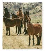 Barcus Creek Band Fleece Blanket