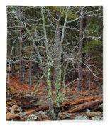 Bare Tree And Boulders In Mark Twain Forest Fleece Blanket
