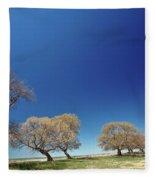 Bare Trees Along Shore Of Lake Manitoba Fleece Blanket