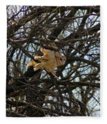 Barn Owl In A Tree Fleece Blanket