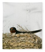 Barn Swallow Nesting Fleece Blanket
