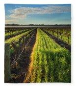 Barossa Vineyard Morning Fleece Blanket