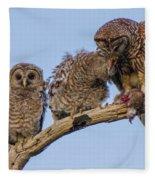 Barred Owl Family Fleece Blanket