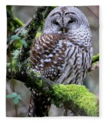 Barred Owl In Tree Fleece Blanket