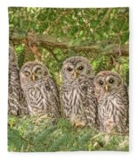 Barred Owlets Nursery Fleece Blanket
