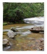Bartlett Experimental Forest - Bartlett New Hampshire Usa Fleece Blanket
