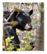 Bashful Black Bear Fleece Blanket