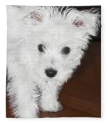 Bashful Puppy Fleece Blanket