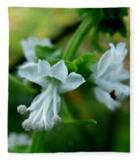 Basil Bloom Fleece Blanket