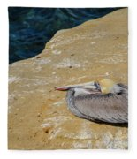 Basking In The Sun Fleece Blanket