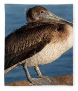 Basking Pelican Fleece Blanket