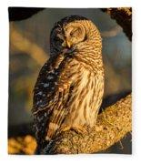Bathed In Sunset Fleece Blanket