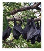 Bats Hanging Out Fleece Blanket
